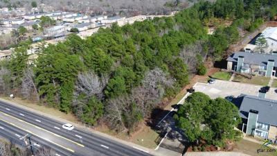 Tyler Commercial For Sale: S Paluxy Drive