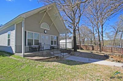 Tyler Single Family Home For Sale: 15915 County Road 285