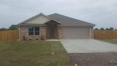 Lindale Single Family Home For Sale: 14276 County Road 452
