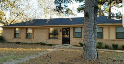 Tyler Single Family Home For Sale: 1524 Terre Haute Dr