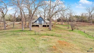 Tyler Single Family Home For Sale: 7495 Fm 344