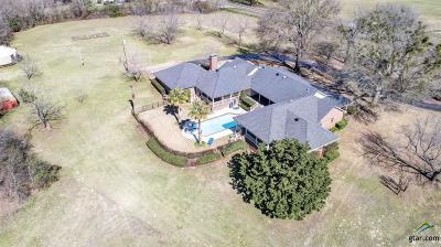 Whitehouse Single Family Home For Sale: 16956 Fm 756