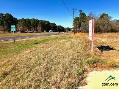Tyler Commercial For Sale: 20801 Hwy 69 S
