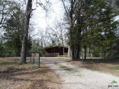 Mineola Single Family Home For Sale: 341 County Road 2245
