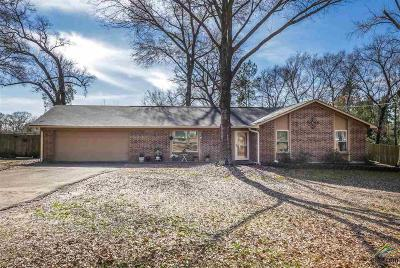 Tyler Single Family Home For Sale: 16375 County Road 1235