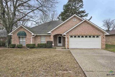 Tyler Single Family Home For Sale: 3210 Omega Dr