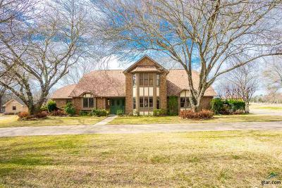 Mt Pleasant TX Single Family Home For Sale: $389,900