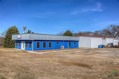 Canton Commercial For Sale: 12190 W Interstate 20
