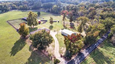 Tyler Single Family Home For Sale: 12013 County Road 461
