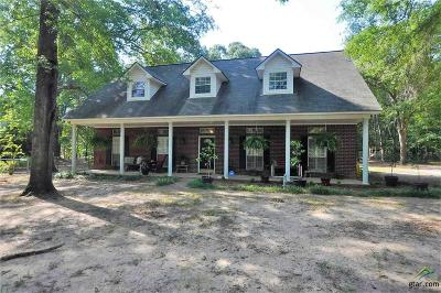 Whitehouse Single Family Home For Sale: 12228 Hillcreek Road