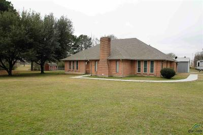 Grand Saline Single Family Home For Sale: 1303 N Spring St.
