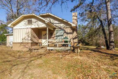 Whitehouse Single Family Home For Sale: 9065 County Road 2193