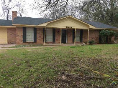 Tyler Single Family Home For Sale: 11464 Lori Ln