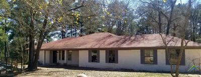 Single Family Home For Sale: 11339 County Road 133