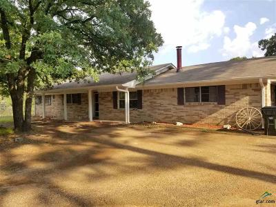 Tyler Single Family Home For Sale: 11857 County Road 41