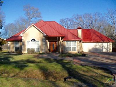 Tyler Single Family Home For Sale: 8951 E Lakeshore Dr