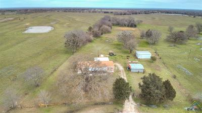 Wills Point Single Family Home For Sale: 3700 Vz County Road 3504