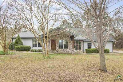 Tyler Single Family Home For Sale: 14094 County Road 192