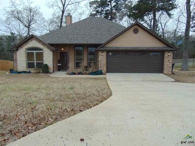 Tyler Single Family Home For Sale: 13583 Country Glen