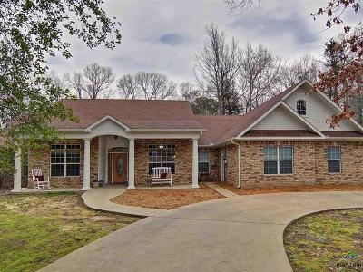 Mineola Single Family Home For Sale: 911 Ryan St
