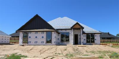 Tyler Single Family Home For Sale: 1315 Fairfield Lane