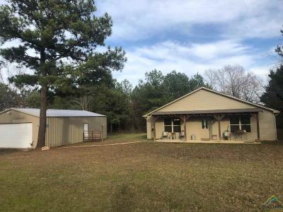 Lindale Single Family Home For Sale: 19926 County Road 4106