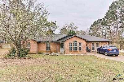 Tyler Single Family Home For Sale: 10683 Talihina