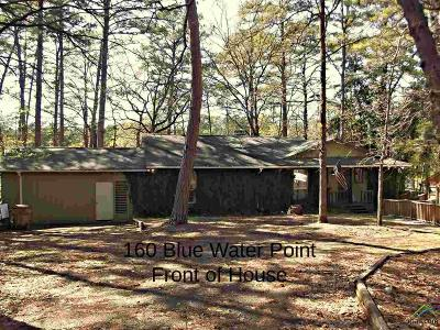 Wood County Single Family Home For Sale: 160 Blue Water Point