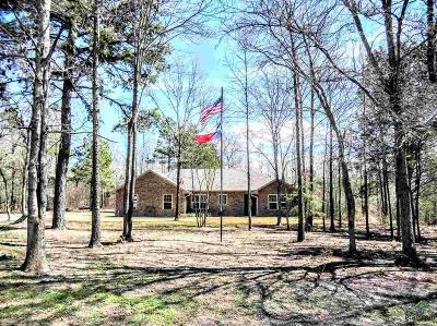 Upshur County Single Family Home For Sale: 4147 Fm 1002