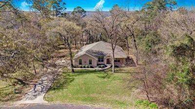Flint Single Family Home For Sale: 17536 Dupree
