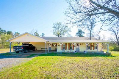 Gilmer Single Family Home For Sale: 8092 Us Hwy 271