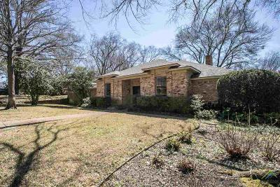 Tyler Single Family Home For Sale: 718 Elmridge Dr