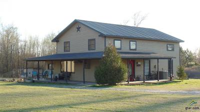 Wood County Single Family Home For Sale: 393 County Road 4105