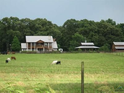 Athens Farm For Sale: 13436 State Hwy 19 North