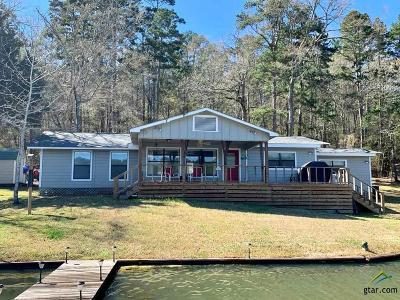 Frankston Single Family Home For Sale: 99 Private Road 7332