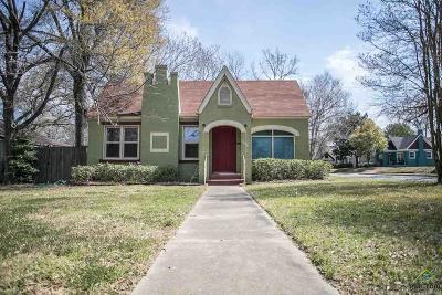 Tyler Single Family Home For Sale: 1006 S Donnybrook