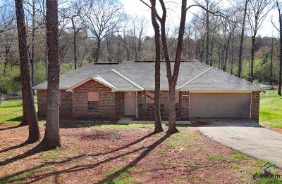 Tyler Single Family Home For Sale: 19125 Hillside Dr.