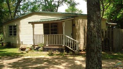 Bullard Single Family Home For Sale: 135 County Road 3605