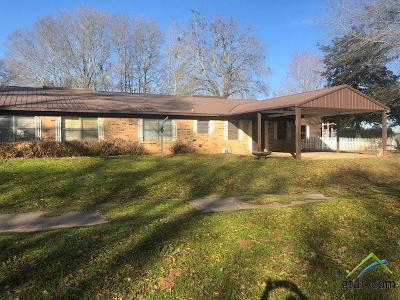 Whitehouse Single Family Home For Sale: 13416 County Road 2134
