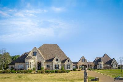 Longview Single Family Home For Sale: 375 Turtle Creek Dr.