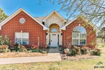 Lindale Single Family Home For Sale: 16861 Stallion Shores Ct
