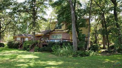 Flint Single Family Home For Sale: 17553 Sleepy Hollow Way