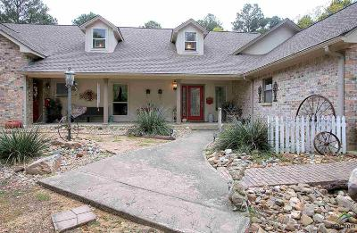 Flint Single Family Home For Sale: 15669 Timberhill Dr