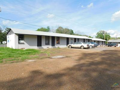 Quitman Commercial For Sale: 511 N. Winnsboro
