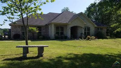 Flint Single Family Home For Sale: 17334 County Road 1325