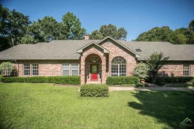 Tyler Single Family Home For Sale: 19364 Hidden Lake Drive