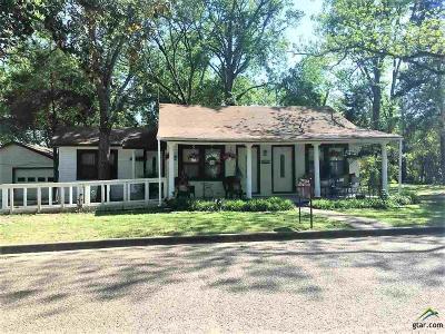 Canton Single Family Home For Sale: 507 E Elm