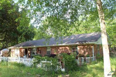 Tyler Single Family Home For Sale: 11389 County Road. 290