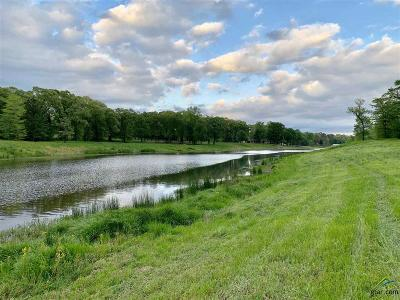 Tyler Residential Lots & Land For Sale: 15767 County Road 285