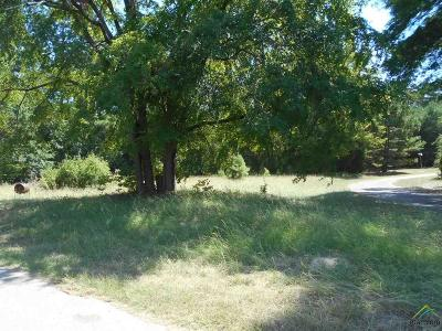 Quitman Residential Lots & Land For Sale: 225 County Road 2157